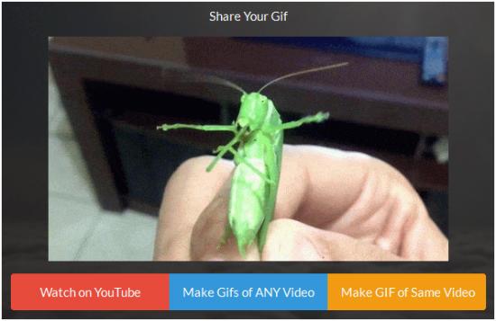 Crie gifs com vídeos